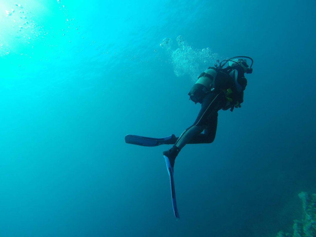diving skills