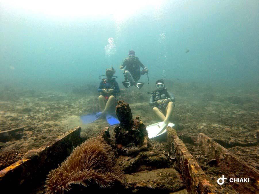 diving blue season