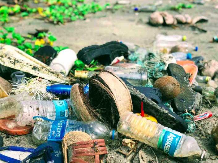 プラスチックが及ぼす影響