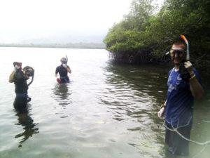 Blue-Season-Bali-Menjangan-Snorkel-Beach-Cleanup