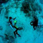 divers-fisheye