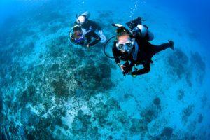 Blue season bali divers