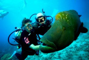 scuba diving with your instructor