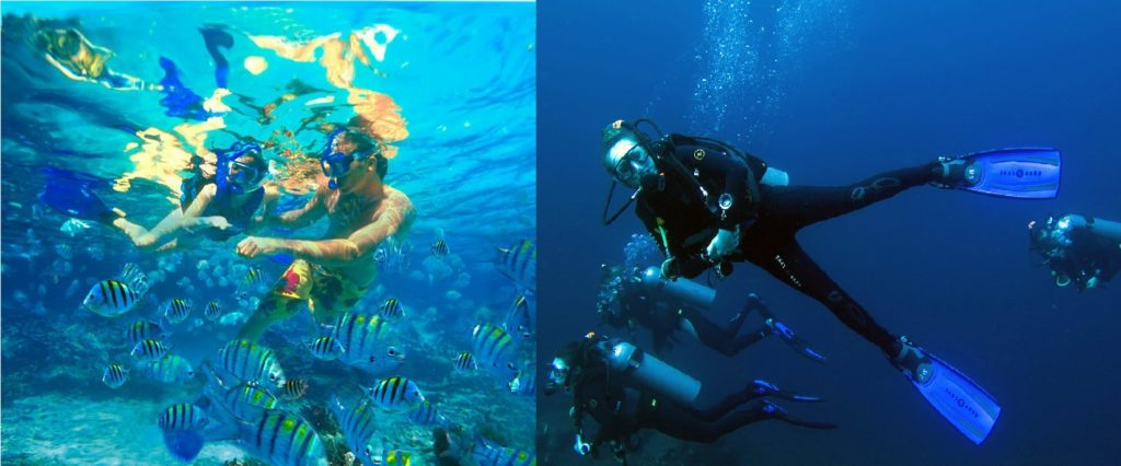 Snorkeling Vs Scuba Diving In Bali