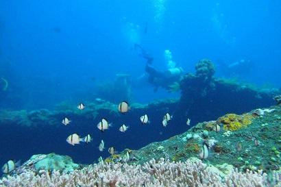Ocean environment Bali