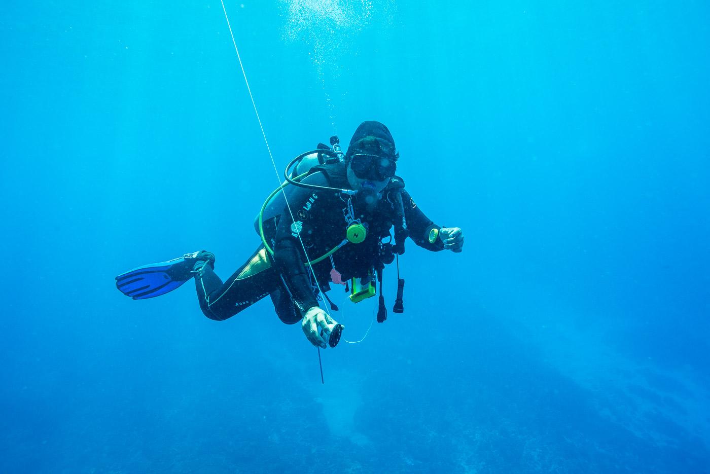 wall diving bali