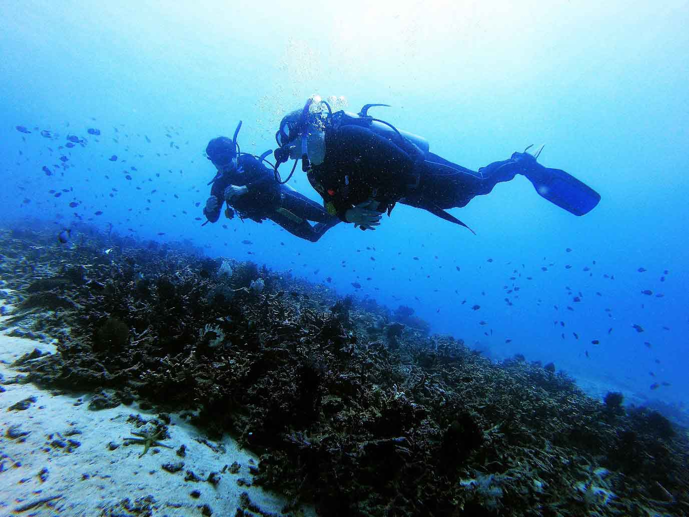 diving bouyancy bali