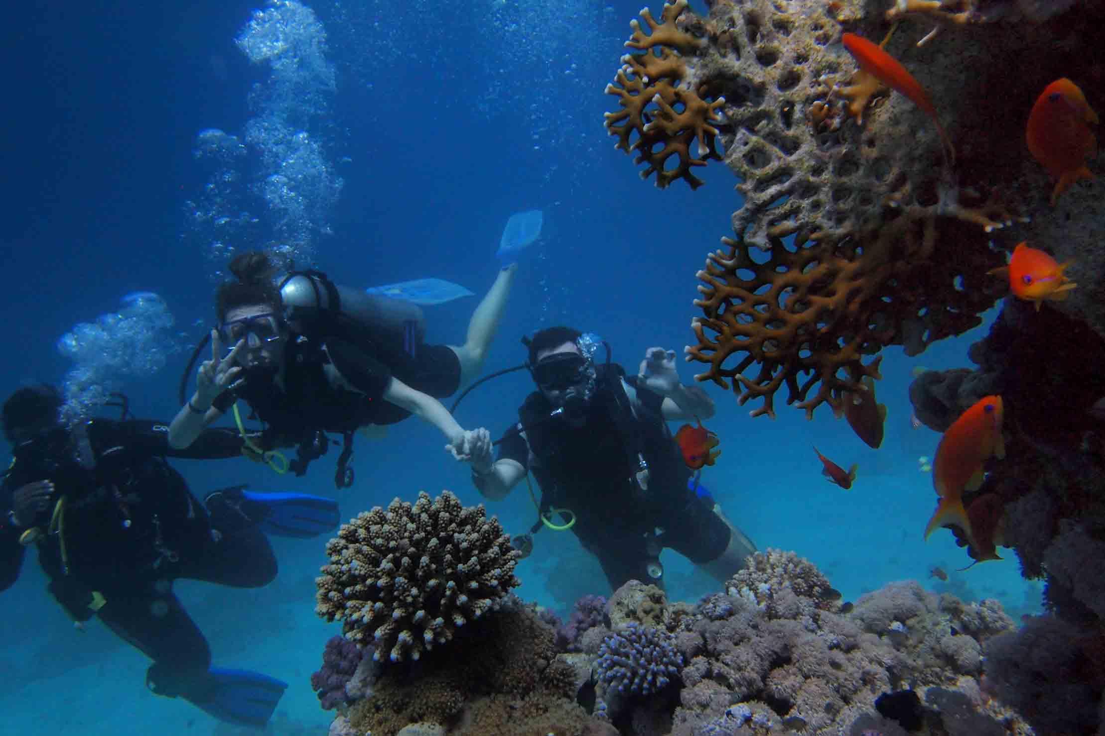 scuba diving course bali