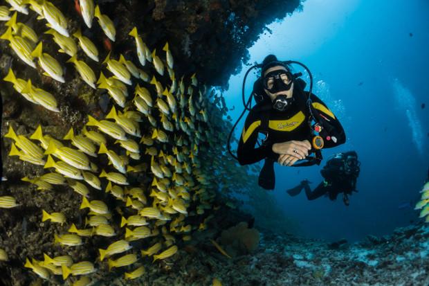 dive destination