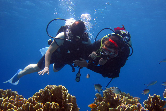 beginner scuba diver blue season bali