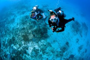 Blue season bali divers