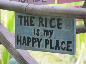 Rice Is My Happy Place