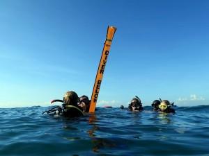 Scuba Divers and SMB