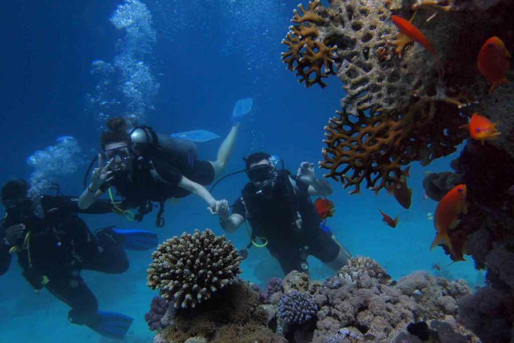 scuba diving course bali