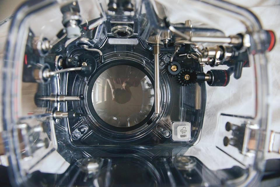 tips underwater photography