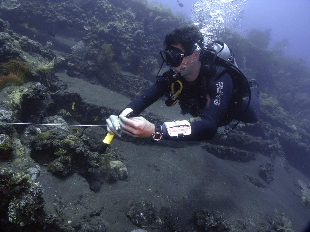 Tips for Wreck Diving