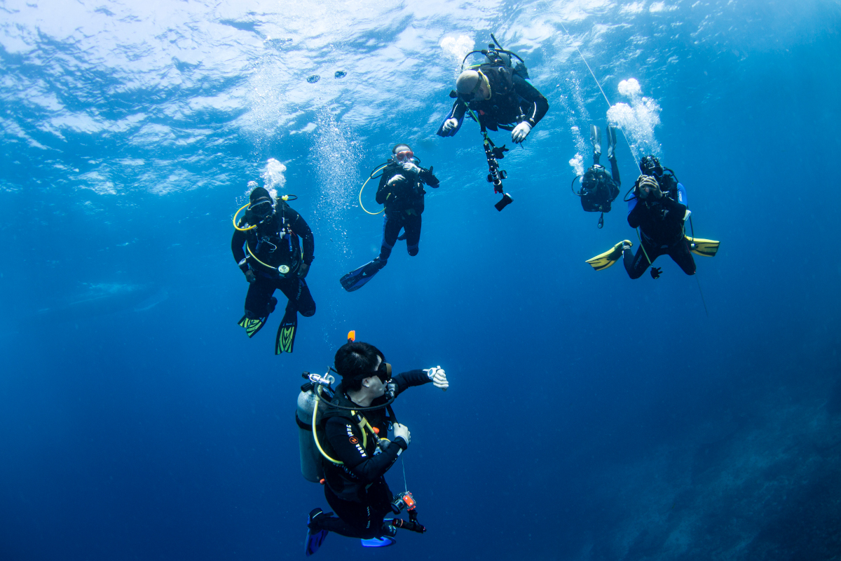 advance open water diving